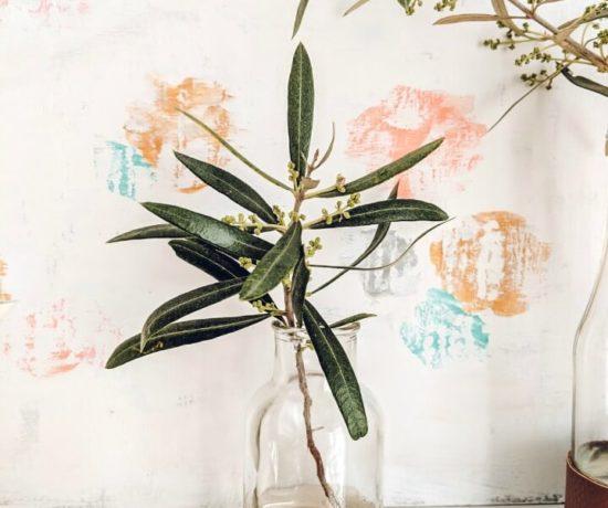 Olive Branch Vases Spring Mantel northernfeeling.com