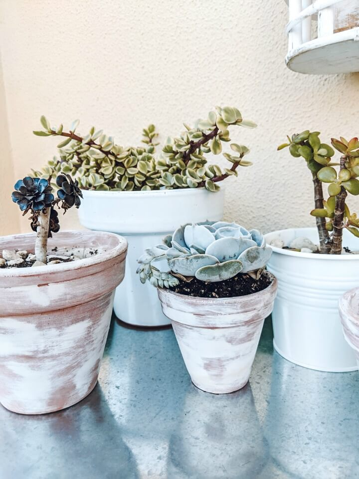 Spring Succulent Front Porch 2019 northernfeeling.com