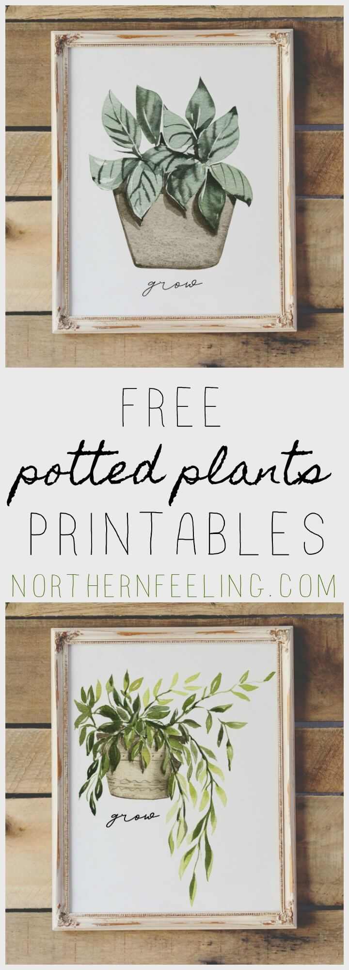 free watercolor potted plants printable // northernfeeling.com