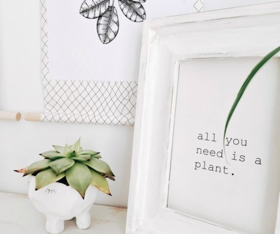 succulent planter & plant printable northernfeeling.com